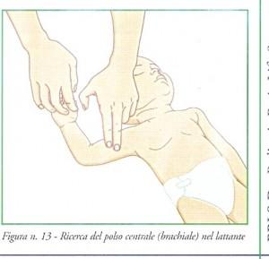 ricerca del polso brachiale lattante