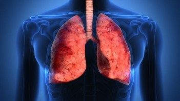 pneumologia, allergologia e otorinolaringoiatria